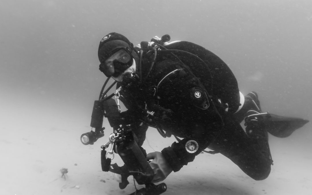 Kursus i Undervandsfoto